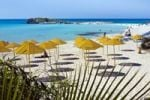 Thumbnail Yellow parasols on Nissi Beach, South Cyprus, Greek Cyprus, Southern