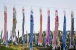 Thumbnail Koinobori, carp streamers, carp-shaped wind socks, Japan, Asia