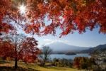 Thumbnail Mount Fuji, autumn, Japan, Asia