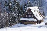 Thumbnail House, snow, Gokayama village, Toyama, Japan, Asia