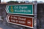 Thumbnail Bilingual guideposts, Killorglin, Ring of Kerry, County Kerry, Ireland, British Isles, Europe
