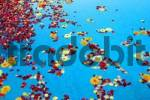 Thumbnail flowers on watersurface of a pool