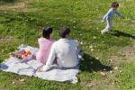 Thumbnail Family, picnic