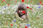 Thumbnail Little girl sitting in a wildflower meadow