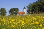 Thumbnail Chapel with blossoming meadow, Hubkapelle Chapel, Penzberg, Bavaria, Germany, Europe