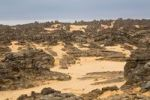 Thumbnail Stone desert, Tassili Maridet, Libyan Desert, Libya, Sahara, North Africa, Africa