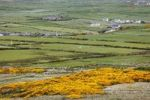 Thumbnail Pasture land around Doolin, Burren, County Clare, Ireland, Europe