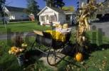 Thumbnail typical american garden decoration in fall, Vermont, USA