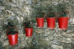 Thumbnail Fire buckets in the fortress Cornet Castle at the harbour of Saint Peter Port, Guernsey island, Europe
