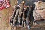 Thumbnail Buffalo hooves, delicacy, market, Vietnam, Asia