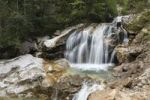 Thumbnail Waterfall in Poellat Gorge, Poellat Stream, Schwangau, Ostallgaeu, Allgaeu, Schwaben, Bavaria, Germany, Europe