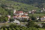 Thumbnail Spitz, view overlooking vineyards in Oberarnsdorf, Danube, Wachau, Waldviertel, Mostviertel, Lower Austria, Austria, Europe