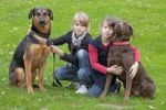 Thumbnail Girls with German Shepherd mix and Labrador