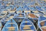Thumbnail Blue fishing boats, Essaouria, Morocco, Africa