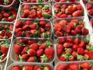 Thumbnail fresh strawberries in boxes for sale