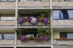 Thumbnail Floral decorations on a balcony, tristesse, Frankfurt, Hesse, Germany, Europe