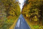 Thumbnail Cars driving on a country road in autumn, Hesse, Germany, Europe