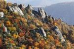 Thumbnail Rocks and autumnal mixed forest above Duernstein, viewed from Vogelbergsteig trail, Wachau valley, Waldviertel region, Lower Austria, Europe