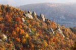 Thumbnail Rocks and autumnal mixed forest above Duernstein, viewed from Vogelbergsteig trail, Wachau valley, Waldviertel region, Lower Austria, Europe