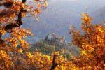 Thumbnail Duernstein castle ruins, viewed from Vogelbergsteig trail, Wachau valley, Waldviertel region, Lower Austria, Europe