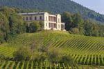 Thumbnail Villa Ludwigshoehe, vineyards near Edenkoben, German Wine Route, Palatinate wine region, Rhineland-Palatinate, Germany, Europe