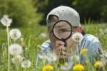 Thumbnail Girl inspecting dandelion clocks through a magnifying glass