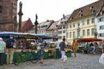 Thumbnail Muenstermarkt square, Freiburg im Breisgau, Baden-Wuerttemberg, Germany, Europe
