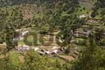 Thumbnail Epina - La Gomera