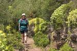 Thumbnail - Garajonay National Park - hiking trail near Igualero - La Gomera