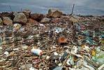 Thumbnail Rubbish on seashore at the beach of Pisa Tuscany Italy