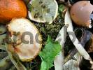 Thumbnail organic waste, kitchen rubbish