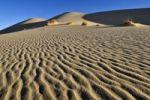 Thumbnail Sand dune of Erg Tihodaine, Wilaya Tamanrasset, Algeria, Sahara, North Africa, Africa