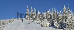 Thumbnail a winter dream on the mountain Unterberg in Lower Austria