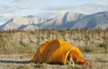 Thumbnail Young woman looking out of an expedition tent, arctic tundra, camping, Mackenzie Mountains behind, Wind River, Yukon Territory, Canada