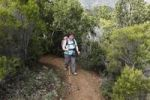 Thumbnail Woman hiking on a forest trail near Vallehermoso, La Gomera island, Canary Islands, Spain, Europe