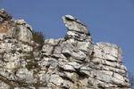 Thumbnail Teufelsmauer rock formation, Spitz, Wachau, Waldviertel, Lower Austria, Austria, Europe