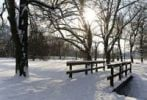 Thumbnail Bridge in the snow, Stadtpark Paradies municipal park, Jena, Thuringia, Germany, Europe
