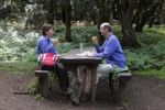 Thumbnail Man and woman having a rest at a wooden table in a laurel forest, Garajonay National Park, La Gomera, Canary Islands, Spain, Europe