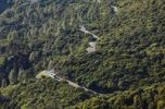 Thumbnail Road through a forest, Garajonay National Park, view from Garajonay mountain, La Gomera island, Canary Islands, Spain, Europe