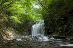 Thumbnail Waterfall, river, vegetation, Karuizawa, Nagano, Japan, Asia