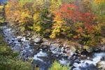 Thumbnail River, autumn, Tochigi, Japan, Asia