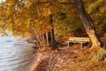 Thumbnail Bench under autumn beeches on the shores of Lake Starnberger See in the evening light, at Allmannshausen, Fuenfseenland area, Upper Bavaria, Bavaria, Germany, Europe