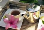 Thumbnail Tea pot and cup, hibiscus flower, Mauritius, Africa