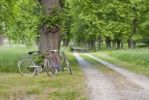 Thumbnail Two bicycles parked by a gravel road, Sweden, Europe