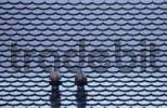 Thumbnail Tiled roof with roof fans