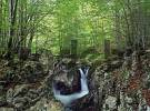 Thumbnail waterfall in the Mostnica gorge, Stara Fuzina, Triglav National Park, Slovenia