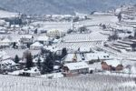 Thumbnail Vineyards covered with snow, Spitz, Wachau, Waldviertel, Forest Quarter, Lower Austria, Austria, Europe
