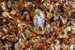 Thumbnail Boy playing with leaves in autumn