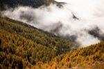 Thumbnail Drei Zinnen, Tre Cime di Lavaredo area in Dolomite Alps, Southtirol, Italy, Europe