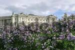 Thumbnail hte building of the Hofburg viewed from the public garden Vienna Austria